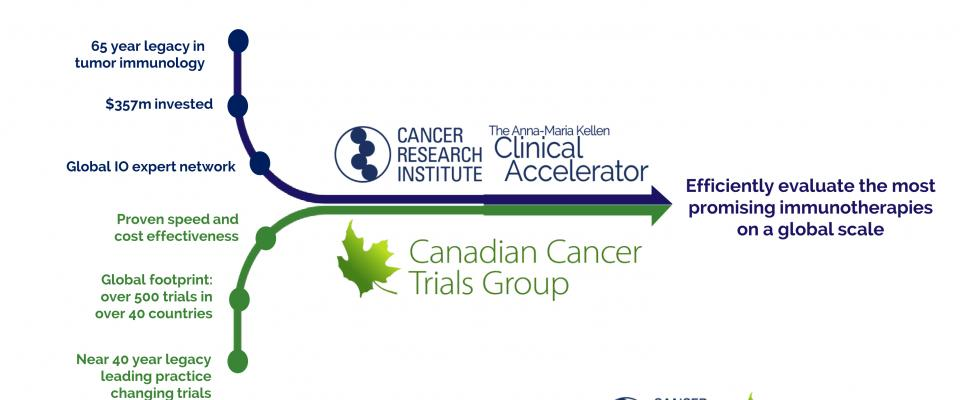 Cancer Research Institute and Canadian Cancer Trials Group Announce Strategic Collaboration